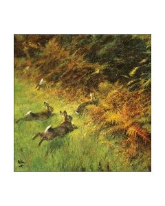Салфетка (SN0501) 33x33, Running Rabbits
